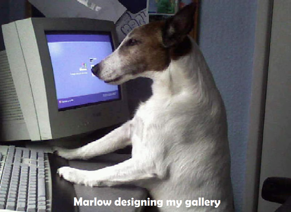 Marlow On The Computer